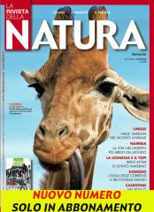 Cover Natura marco urso- topi