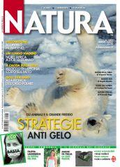 Marco urso Natura Orso polare