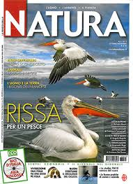 Pellicani, lago kerkini ,Marco Urso, articolo ,Natura
