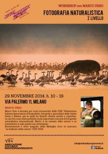 Workshop I livello